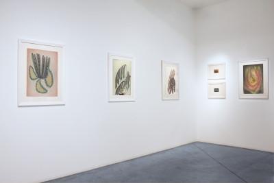 Vue de l'exposition *Anna Zemankova : hortus delicarum*, christian berst art brut, Paris, 2013. - © christian berst art brut, christian berst — art brut