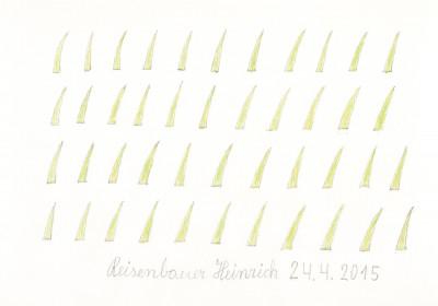 grass - © christian berst — art brut