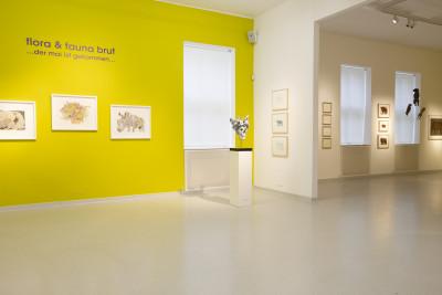 exhibition view of *in flaura & fauna brut*, gugging gallery, klosterneuburg, austria, 2019. - © gugging gallery, christian berst — art brut