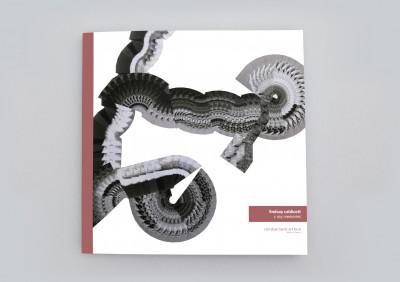 catalogue publié à l'occasion de l'exposition *lindsay caldicott : x ray memories*, christian berst art brut, paris, 2018. - © christian berst art brut, christian berst — art brut