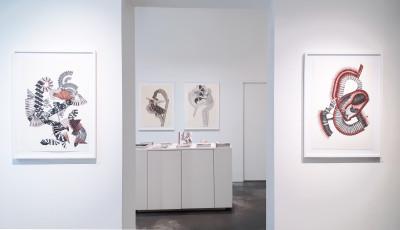 Exhibition view of *Lindsay caldicott : x ray memories*, christian berst art brut, Paris, 2018. - © christian berst art brut, christian berst — art brut