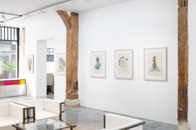Exhibition view of *anna zemánková : hortus deliciarum #2*, christian berst art brut, Paris, 2021 - © © christian berst art brut, christian berst — art brut