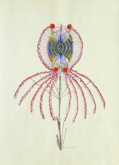 La flore poétique d'Anna Zemánková - © christian berst — art brut